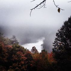 Cumberland River in Kentucky at Cumberland Falls State Park Cumberland Falls, State Parks, Kentucky, Seasons, Photography, Photograph, Seasons Of The Year, Fotografie, Photoshoot