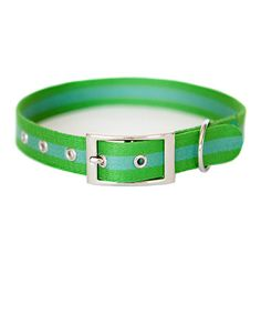 This Blue & Green Seagrass Stripe Collar by Kiss My Mutt is perfect! #zulilyfinds