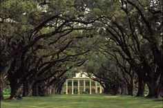 Oak Alley Plantation on River Road, just outside of New Orleans