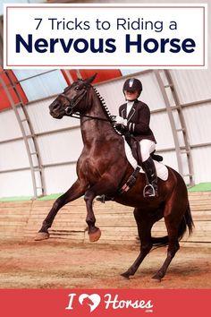 7 Tricks For Riding A Nervous Horse Horseback Riding Tips, Horse Riding Tips, Trail Riding, Dressage, Barrel Racing Horses, Barrel Horse, Horse Exercises, Horse Care Tips, Horse Facts