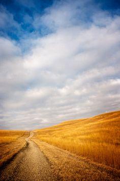 dirt road in the country.. tumblr_lzsue89Jas1qz983yo1_500.jpg (498×750)
