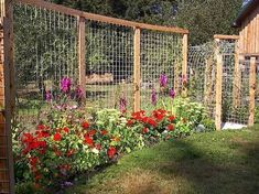 17 DIY Garden Fence Ideas to Keep Your Plants Garden trellis panels which become a fence. This is a dream fence for anyone in deer country. Very slick and very worth sharing. Fenced Vegetable Garden, Diy Garden Fence, Big Garden, Garden Landscaping, Decorative Garden Fencing, Upcycled Garden, Garden Privacy, Bamboo Garden, Backyard Privacy
