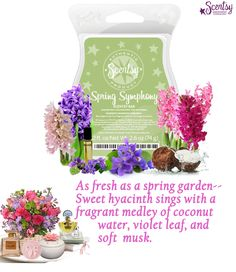 Scentsy April Scent of the Month Sweet Symphony: $4.50 for the scent which is described as: As fresh as a Spring Garden--Sweet hyacinth sings with a fragrant medley of coconut water, violet leaf, and soft musk. This will be perfect for Mother's day. Reminds you of your Mother or Grandmother with her Powder box with loose powder puff and floral perfume. Scentsy April 2015 Scent of the month. #spring #mothersday #garden www.iamwickless.com