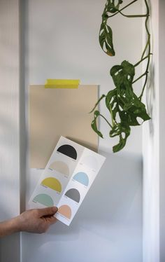 British brand Farrow & Ball partnered with Kelly Wearstler on The California Collection paint palette inspired by the colors of California.