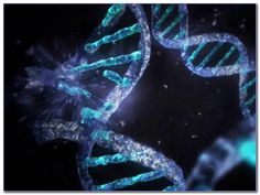 32 Best Biology Online Tutoring images in 2016 | Science