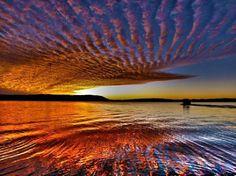 mackerel sky - Google Search