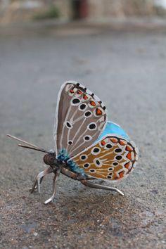 Metal de la mariposa escultura chatarra por GreenHandSculpture