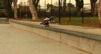 Um belo vídeo produzido pela Braille Skateboarding onde o foco é o skate porque o skatista é invisível a unica coisa que pode ser vista pelo atleta é o tênis se movimentando e para mandar a tricks.
