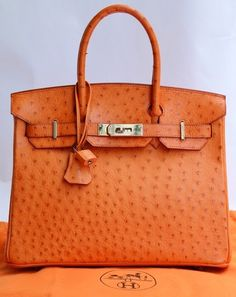Hermes Orange Ostrich BIRKIN. I need a rich husband! LOVE