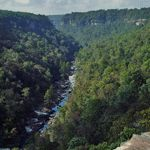"""Little River Canyon: Sometimes called the """"Grand Canyon of the  East"""". There are more than one hundred rare, endangered, or threatened state or federally listed plant and animal species at Little River Canyon National Preserve"""