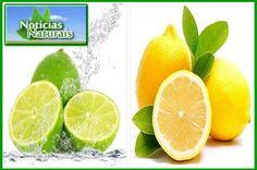15 Razões para Você Beber Água com Limão Todas as Manhãs