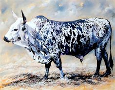 Nguni Bull in oils - Terry Kobus Farm Animals, Animals And Pets, Longhorn Cattle, Longhorn Cow, Bee Painting, Wooly Bully, Cow Art, Animal Paintings, Wildlife Paintings