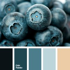 beige, blueberry, color matching, color of berries, dark cyan, gray-blue, heavenly, light blue, monochrome blue color palette, monochrome color palette, pale blue, pastel cyan, shades of blue, silver blue.