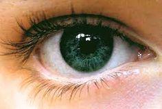 olhos - Pesquisa Google