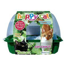 Dunecraft Happy Cat Plant Kit, Multicolor