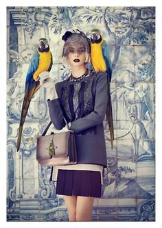 editorial shoot with birds - Google Search