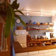 kazenさんの、サブウェイタイル,無印良品,ニトリ,コウモリラン,アイアン棚受け,ブルーグレーの壁,リノベーション,Kitchen,のお部屋写真