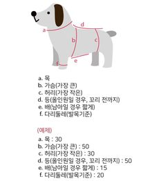 강아지옷 패턴(도안) 그리기 : 네이버 블로그 Pet Dogs, Dog Cat, Dog Clothes Patterns, Puppy Clothes, Dog Pattern, A30, Diy Stuffed Animals, Dog Accessories, Poodle