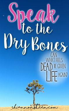 Speak to the Dry Bones- Can what feels dead be given life again?