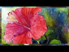 How To Paint the Red Hibiscus Flower In Watercolor By Ross Barbera - YouTube