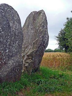 Menhirs. Morbihan. Brittany