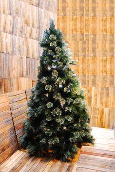 Arbol 2.10 m Disponible en Lomas, Polanco y Pedregal.  #regalos #detalles #viveduartee #decoracion #interiorismo #ideas #ideaspararegalar #cajas #disenoenmexico #disenomexicano #cajasdecarton