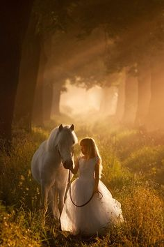 Your imagination is like a horse, it takes you to new places and if you let it run free you will be amazed with what you will see