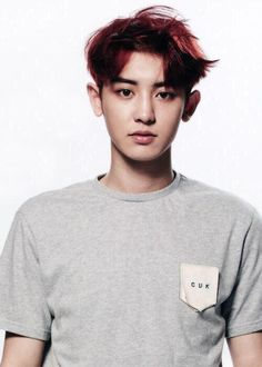 chanyeol / exo / 찬열