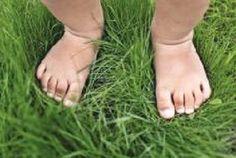 Ferrara: per gli apprendisti scienziati due appuntamenti per scoprire la natura a piedi nudi o dentro un microscopio