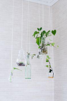DIY: Vas av en glödlampa   dekorera ett badrum