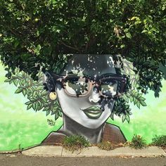 Paul Deej in Perth, Western Australia, 2015, street art with the nature