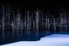 Sony World Photography Awards 2017- 10 najlepszych zdjęć w kategoriach konkursu otwartego - Konkursy - wyniki - Swiatobrazu.pl