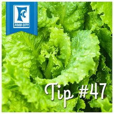 To keep lettuce from getting soggy, put a paper towel in the container before refrigerating.