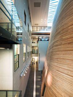 VÅGEN high school and SANDNES Culture Academy | Link Arkitektur | Archinect
