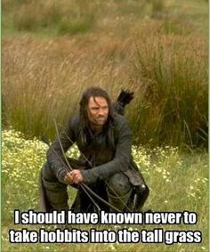 funny pictures, lord of the rings. This remains me of me and Hannah :)
