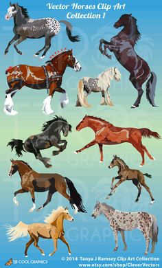 Horse Collection 1 Clip Art by CleverVectors on Etsy Majestic Horse, Beautiful Horses, Horse Drawings, Animal Drawings, Animals Images, Animals And Pets, Horse Clip Art, Miniature Ponies, Horse Clipping