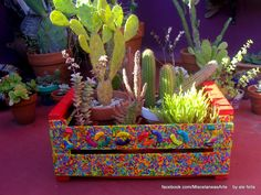 Keep Calm And Diy, Diy Arts And Crafts, Diy Crafts, Mexican Patio, Cactus Plante, Spring Projects, Wooden Crates, Garden Inspiration, Flower Pots