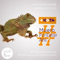 """Les fale ferga mi fida""  Idea creativa @davichobandazza Copy's @reneanzorena @tahusin @davichobandazza Artes @reneanzorena Agencia: awap.com.mx  #maskota #maskotastore #maskotamaltrataanimales #maskotamata  #HablamosDigital #HablamosViral #HablamosDiseño #HablamosCliente  #creative #true #awappers #digitalmarketing #digitalagency #mexico #df #designPorn #AWAP #html #css #responsivo #OnlineReputation #marketingdigital #agenciadigital"