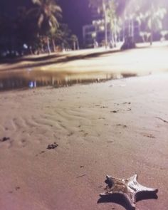 """""""Alone. . #travel #daily #insta #일상 #일상스타그램 #nature #exercise #photooftheday #thailand #travelgram #wanderlust #night ##voyage #viaje #여행 #旅行"""" by (little_worldwalker). night #daily #exercise #nature #일상스타그램 #thailand #insta #travelgram #일상 #여행 #travel #voyage #旅行 #wanderlust #photooftheday #viaje. [Follow us on Twitter at www.twitter.com/MICEFXsolutions for more...]"""