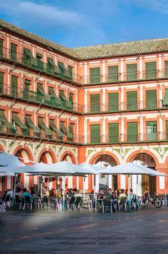 Relax en la Plaza de la Corredera (Córdoba)
