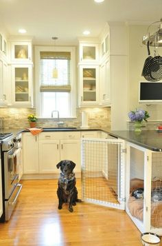 Dog kennel under countertop