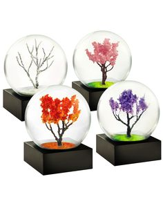 Seasons Mini Snow Globes, Set of 4   Gardeners.com