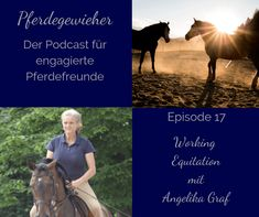 Interessierst du dich für Working Equitation? In diesem Podcast erfährst du mehr über diese interessante Reitweise. Movies, Movie Posters, Horse Feed, Horseback Riding, Film Poster, Films, Popcorn Posters, Film Books, Movie