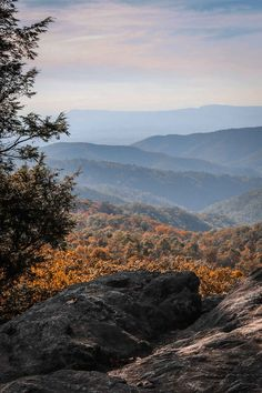 Fall landscape seen from a Skyline Drive overlook in Virginia's Shenandoah National Park