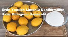 Evde Yapılan Limonlu Dondurmanın Hazır Olduğunu Sanacaklar 1