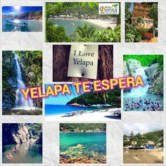 #HotelesenYelapa   #Yelapa se ha convertido el destino tuistico de Jalisco de moda; ya que le recomendamos que se queden varios dias:; pueden realizar diferentes actividades.  Pueden ir a #explorar sus impresionantes cascadas,contempls sus románticos y armonizantes #PuestasdeSol; Convivir y disfrutar de su rica comidcomida mexicana en sus #Rusticos restaurantes al aire libre.   Para su #Hospedaje, #Hotel Casa Bahía Bonita es el mas nuevo y reconocido por su ttranquila área,cuenta con 7…
