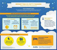 Bedwetting and potty training infographic
