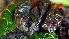 Mangold sa považuje za hodnotnú zeleninu