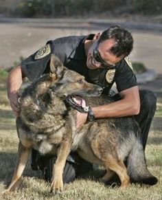K9 Officer | k9 officer How to Become a Police K9 Officer Become a Dog Handler