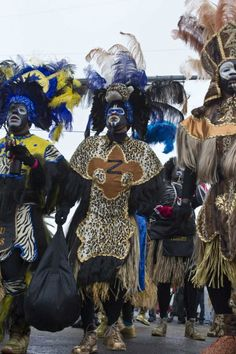 Krewe of Zulu, ready to roll Mardi Gras morning.  Photo by Skip Bolen.
